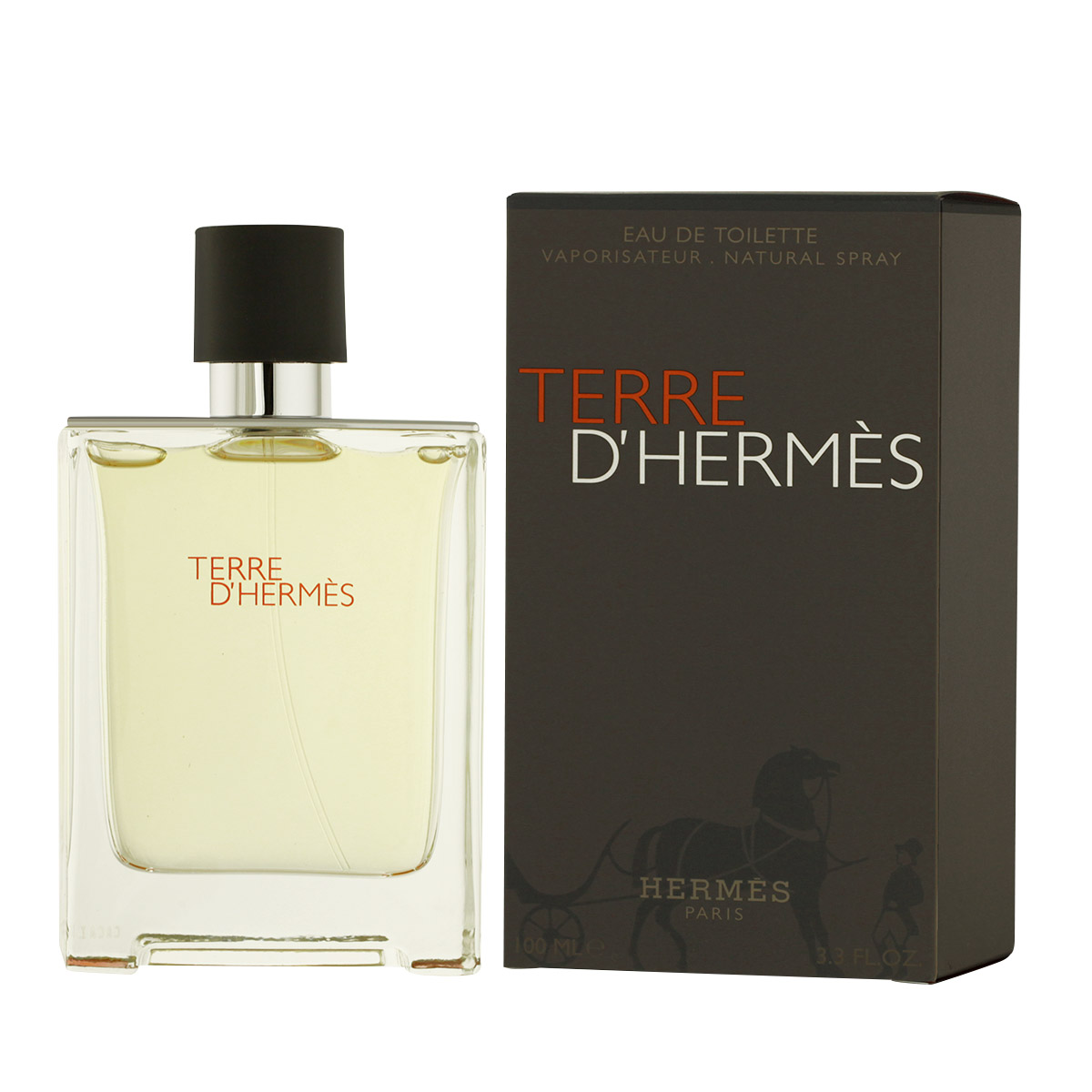Hermès Terre D'Hermès EDT 100 ml M