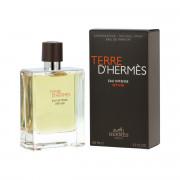 Hermès Terre D'Hermès Eau Intense Vetiver EDP 100 ml M