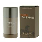 Hermès Terre D'Hermès DST 75 ml M